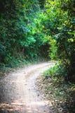 Bello passaggio pedonale verde della strada al punto di vista dal parco nazionale di Kep, Cambogia Fotografie Stock