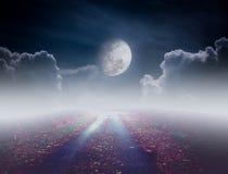 Bello percorso di via al cielo tranquillo di notte Fotografia Stock Libera da Diritti