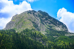 Bello picco dell'orso di Medjed con Forest Mountain verde nel parco nazionale Durmitor, alpi di Dinaric, Montenegro Fotografia Stock Libera da Diritti