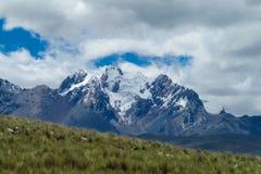 Bello picco della neve delle Ande Fotografia Stock
