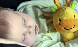 Bello piccolo bambino che dorme con un giocattolo fotografia stock libera da diritti