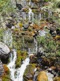Bello piccolo fiume vicino al oeschinensee nel kandersteg Immagine Stock Libera da Diritti