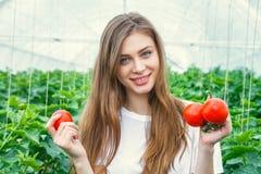 Bello pomodoro della tenuta dell'agricoltore della ragazza Immagine Stock
