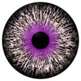 Bello porpora in tondo e bulbo oculare bianco dell'occhio 3d Halloween illustrazione vettoriale