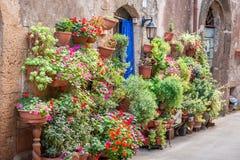 Bello portico decorato con i fiori in Toscana Fotografia Stock Libera da Diritti