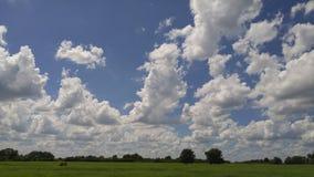 Bello prato aperto con cielo blu di cristallo e le nuvole bianche lanuginose qui sopra fotografia stock