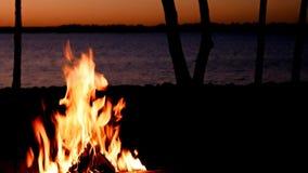 Bello primo piano del fuoco di accampamento della riva del lago subito dopo il tramonto con gli alberi lungo litorale del lago mi video d archivio