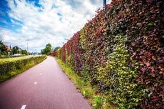 Bello primo piano olandese degli elementi del parco della città Fotografia Stock Libera da Diritti