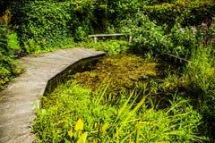 Bello primo piano olandese degli elementi del parco della città Immagini Stock Libere da Diritti