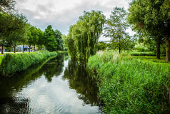Bello primo piano olandese degli elementi del parco della città Immagini Stock