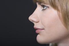 Bello profilo della donna Immagini Stock