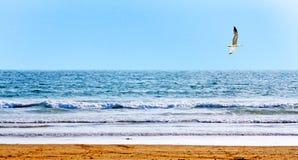 Bello puntello dell'oceano Fotografia Stock Libera da Diritti