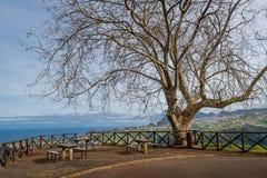 Bello punto di vista nelle montagne dell'isola del Madera Immagini Stock Libere da Diritti