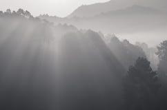 Bello raggio di luce in bianco e nero fotografia stock libera da diritti