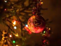 Bello ramo di albero del nuovo anno Fotografie Stock Libere da Diritti