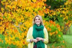 Bello ramo di mezza età della tenuta della donna di un albero di acero nel parco di autunno Fotografia Stock