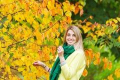 Bello ramo di mezza età della tenuta della donna di un albero di acero nel parco di autunno Immagine Stock