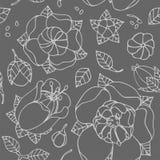 Bello reticolo floreale Fotografie Stock Libere da Diritti
