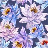 Bello reticolo senza giunte floreale Grandi fiori di loto variopinti su fondo grigio Illustrazione disegnata a mano Pittura dell' illustrazione vettoriale