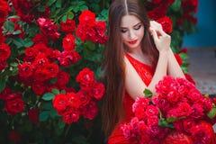 Bello ritratto della giovane donna castana sensuale vicino alle rose rosse Fotografia Stock