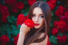 Bello ritratto della giovane donna castana sensuale vicino alle rose rosse Immagine Stock