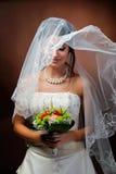 Bello ritratto della sposa Fotografie Stock Libere da Diritti