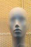 Bello ritratto di un manichino femminile Immagini Stock