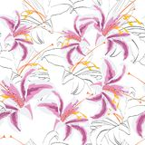 Bello rosa, modello senza cuciture in bianco e nero con i gigli Linee di contorno disegnate a mano Cartolina d'auguri di progetta royalty illustrazione gratis