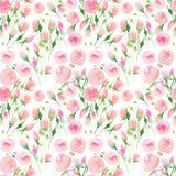 Bello rosa variopinto floreale adorabile elegante sveglio tenero delicato e rose rosse di estate della molla con il waterc del ma illustrazione di stock