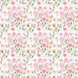 Bello rosa variopinto floreale adorabile elegante sveglio tenero delicato e rose rosse di estate della molla con il waterc del ma royalty illustrazione gratis