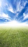bello sole del prato di orizzonte del chiarore Fotografia Stock