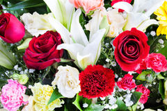 Bello sono aumentato, il garofano e lilly i fiori. Fotografia Stock Libera da Diritti