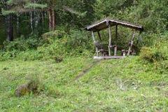 Bello supporto conico scolpito di legno sulla traccia di salute del terrenkur lungo il fiume della montagna di Belokurikha Fotografia Stock Libera da Diritti