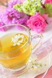 Bello tè verde per il pomeriggio fotografia stock