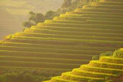 Bello terrazzo del riso del paesaggio del Vietnam sulla montagna Fotografia Stock