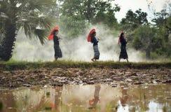 Bello terreno coltivabile delle ragazze Fotografia Stock