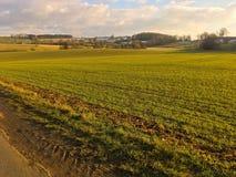 Bello terreno coltivabile soleggiato immagine stock libera da diritti