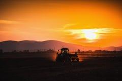 Bello tramonto, agricoltore in trattore che prepara terra con il semenzaio Immagini Stock Libere da Diritti