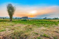 Bello tramonto al campo asciutto di agricoltura della campagna Immagine Stock