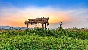 Bello tramonto al campo ed alla capanna asciutti di agricoltura della campagna Fotografia Stock Libera da Diritti