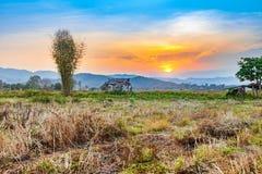 Bello tramonto al campo ed alla capanna asciutti di agricoltura della campagna Immagini Stock