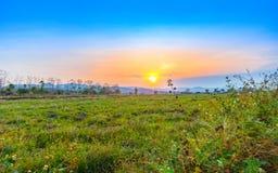 Bello tramonto al paesaggio asciutto del campo di agricoltura Fotografie Stock Libere da Diritti