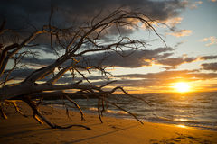 Bello tramonto all'isola del nord Australia di Stradbroke fotografia stock libera da diritti