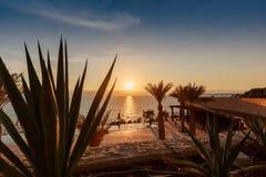 Bello tramonto alla linea costiera del mar Morto in Giordania Spiaggia tropicale con le palme e la pianta di deserto Immagine Stock