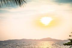 Bello tramonto arancio blu sulla foglia della palma e della spiaggia immagine stock libera da diritti