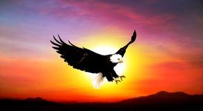 Bello tramonto del cielo Fotografie Stock Libere da Diritti