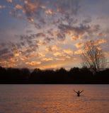 Bello tramonto del lago Fotografie Stock Libere da Diritti