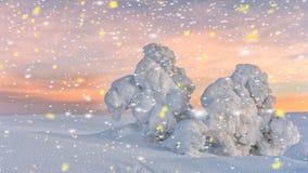 Bello tramonto di inverno con neve di caduta royalty illustrazione gratis