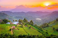 Bello tramonto di Kisoro Uganda sopra le montagne e le colline immagini stock