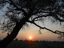 Bello tramonto di sera fotografie stock